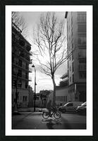 Un Velo dans Belleville Picture Frame print