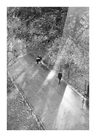 Winter Shadows Buttes Chaumont Picture Frame print