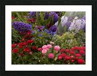 Spring Garden  Picture Frame print