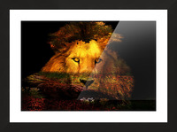 The Lion Watches Picture Frame print