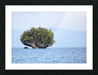 Rock Island Picture Frame print