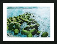 Wall Nature Decoration 7 Picture Frame print