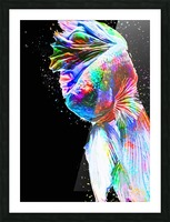 Betta Fish Lover 24 Picture Frame print