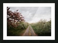 Chemin fleuri Impression et Cadre photo