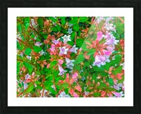 closeup blooming pink flowers with green leaves Picture Frame print