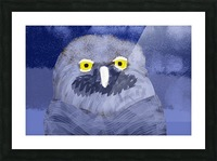 snow owl Picture Frame print