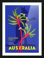 Kangaroo Paws Australia Picture Frame print