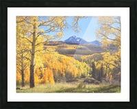 Sunshine Peak through the Aspen Picture Frame print