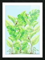 Frog Garden  Picture Frame print