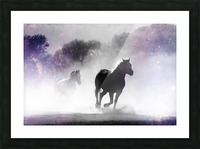 Wild Horses in Nature Picture Frame print