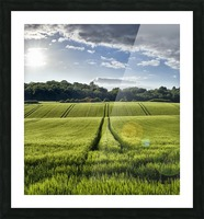 Wheat Fields Picture Frame print