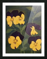 Yellow and purple pansies Picture Frame print