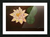 Lotus Picture Frame print