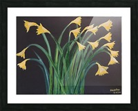 daffodils Picture Frame print
