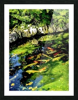 Pound of Color Picture Frame print