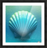 Blue Shell Picture Frame print