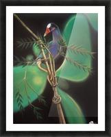 purple gallinule Picture Frame print