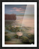 water lillies Picture Frame print