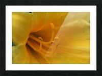 Pistil Picture Frame print