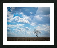 Alone With My Thoughts Picture Frame print