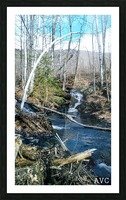 Brook through the Forest Picture Frame print