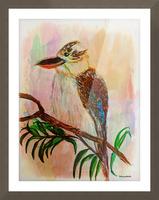 Kookaburra Bird  Picture Frame print