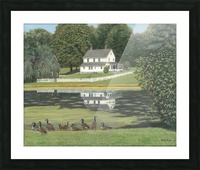 Geese at Hawley Pond - Newtown Series 16X20 Picture Frame print