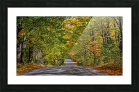 Fall Colors over a Country Road Picture Frame print