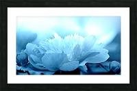 Heavenly Peony Aqua Blue Picture Frame print