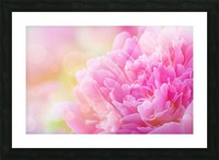 Pink Dream Picture Frame print