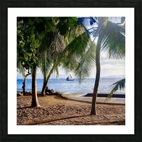Sailboat And Palms Picture Frame print
