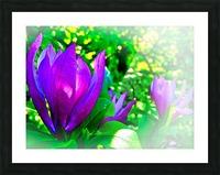Mauve Picture Frame print