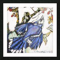 Louisiana Blue Jay Study on Wood Picture Frame print