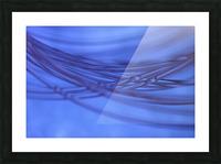 Animas Picture Frame print