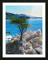 Lone Tree at Pebble Beach Picture Frame print