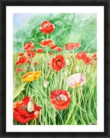 Poppy Field Picture Frame print