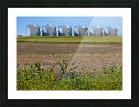 Grain Silos Picture Frame print