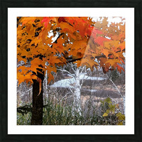 Autumn at Lake Superior Picture Frame print