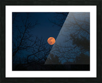 Moonrise Picture Frame print