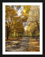 Autumn on Olivers End Picture Frame print