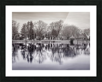 ile Roussin Picture Frame print