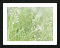 Herbe haute Picture Frame print