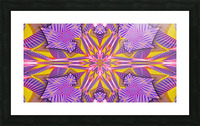 Lotus In The Pink 2 Picture Frame print