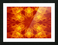 Fire Flowers 7 Picture Frame print