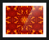Fire Flowers 9 Picture Frame print