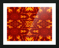 Fire Flowers 14 Picture Frame print