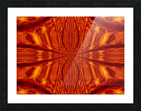 Fire Flowers 55 Picture Frame print