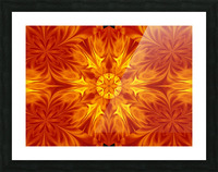 Fire Flowers 69 Picture Frame print