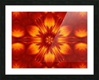 Fire Flowers 74 Picture Frame print