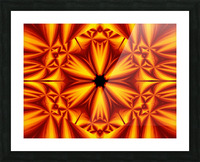 Fire Flowers 103 Picture Frame print